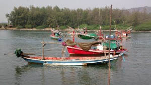 Fishing boats at anchor in the Pranburi River, Pranburi, Thailand
