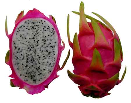 pitaya fruit what is the healthiest fruit