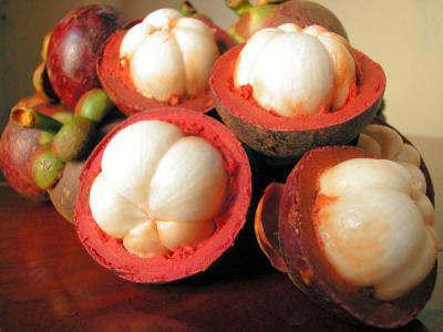 Thai Fruits: List of fruits in Thailand with botanical and Thai names