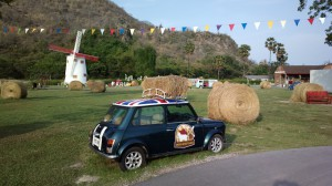 Mini Cooper at the Swiss Sheep Farm