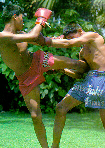 Thai Kick Boxing