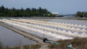 Salt farm south of Chao Samran Beach, Thailand